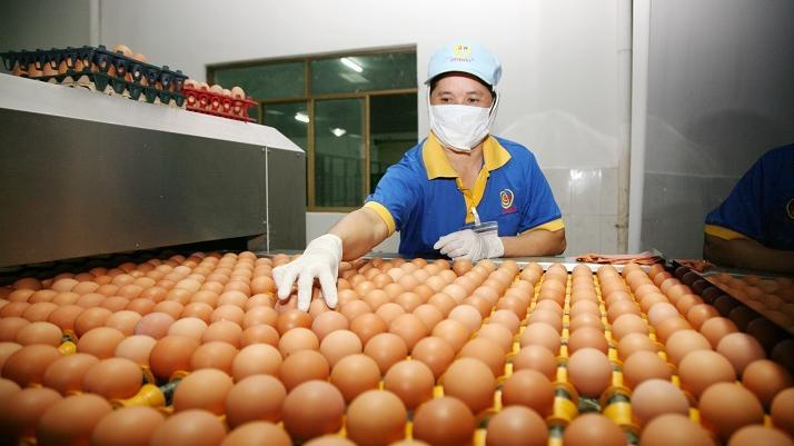 Xây dựng hệ thống tiêu thụ trứng gia cầm để bảo đảm đầu ra ổn định