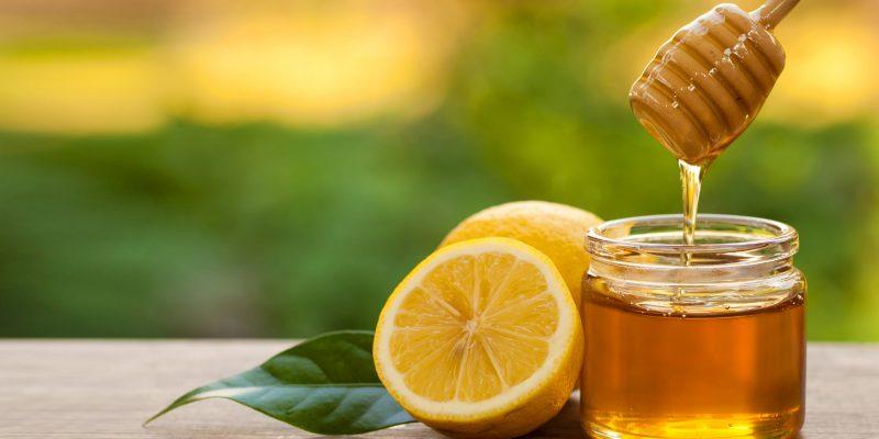Sử dụng mật ong để tăng sức khỏe cho gà, tại sao không?